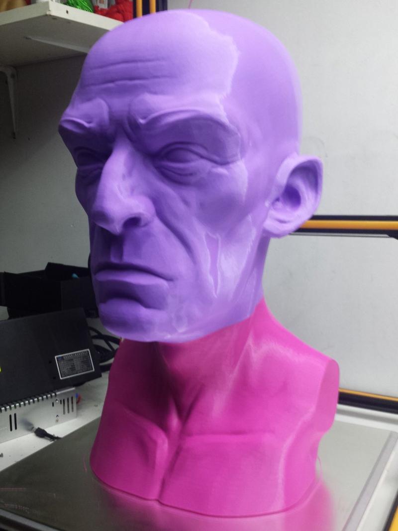 bust 3d printed