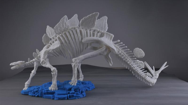 or example, this cute Stegosaurus skeleton.