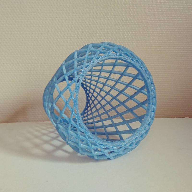 For example, one user 3D printed a complex mesh to test the volume capacity of the printer.