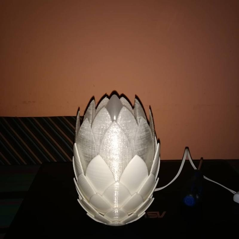 a nice lamp made of PLA and PET-G at 0.2 layer height with 20% infill and no support. Look how nice it is.