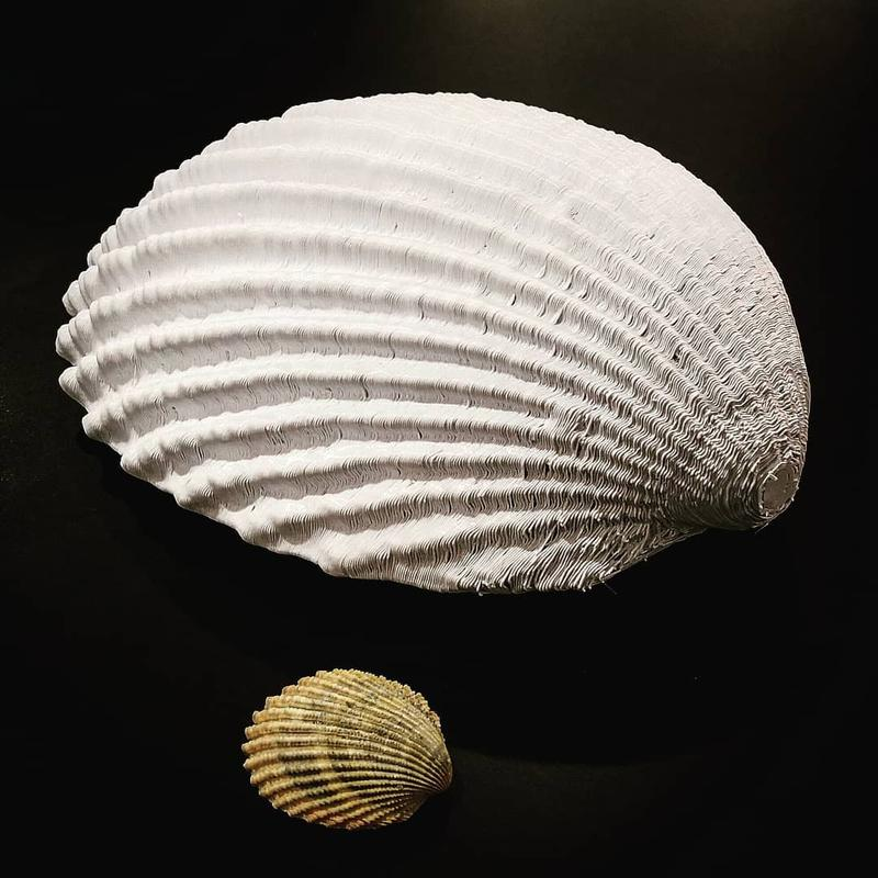 3D scanned and then printed a huge shell. In this case, the visible layers add a realistic effect to the whole model.