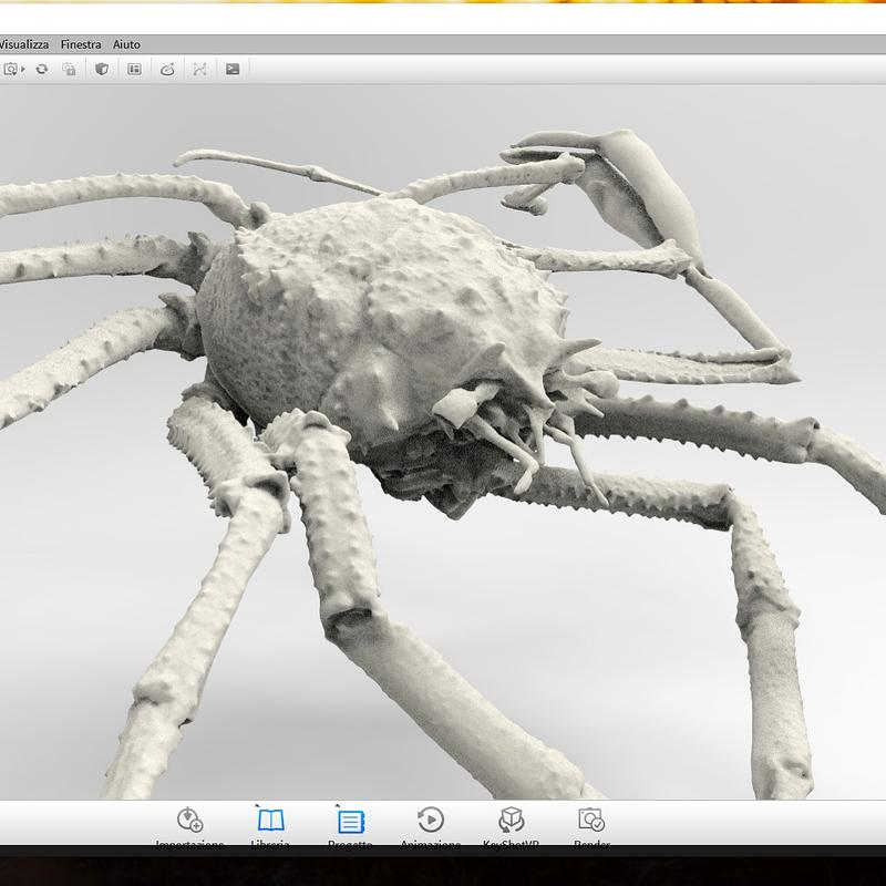 One designer used it to scan a Paromola Cuvieri crab. Look at the accuracy of this render. It is amazing.
