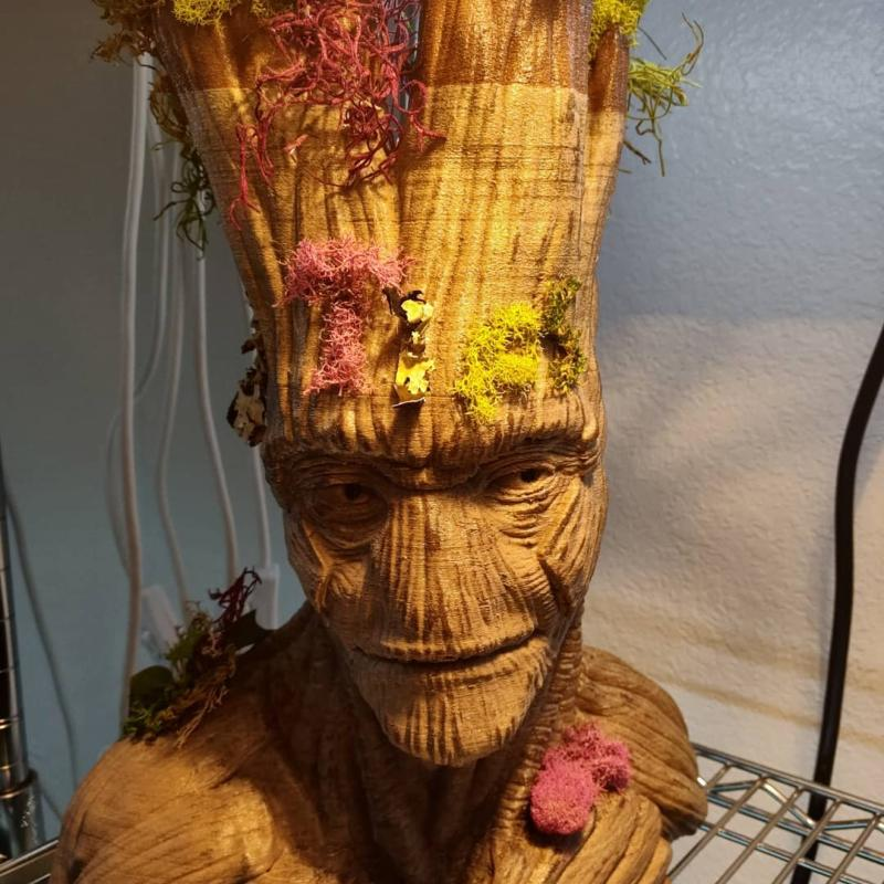 a well-growed Groot