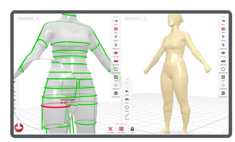 the 3d body model